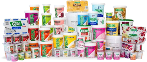 darling-romery-yogurt-product-selection
